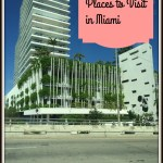 5 Places to Visit in Miami #travel