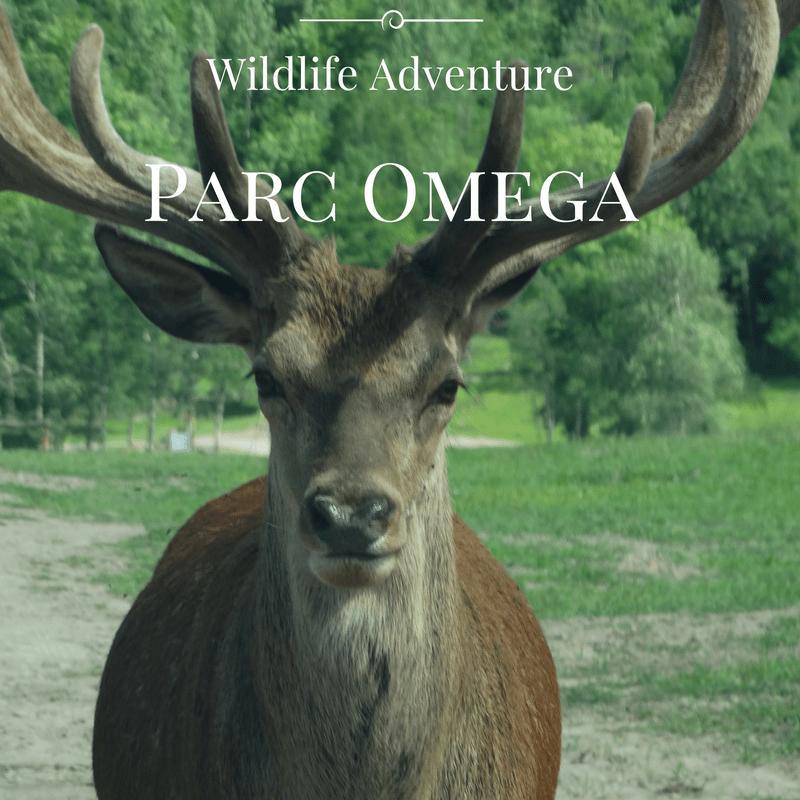 parc_omega