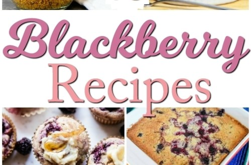 blackberry_recipes