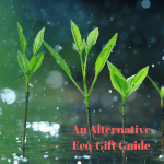 The Alternative Eco-Gift Guide