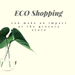 Eco Shopping is Good for You and The Environment