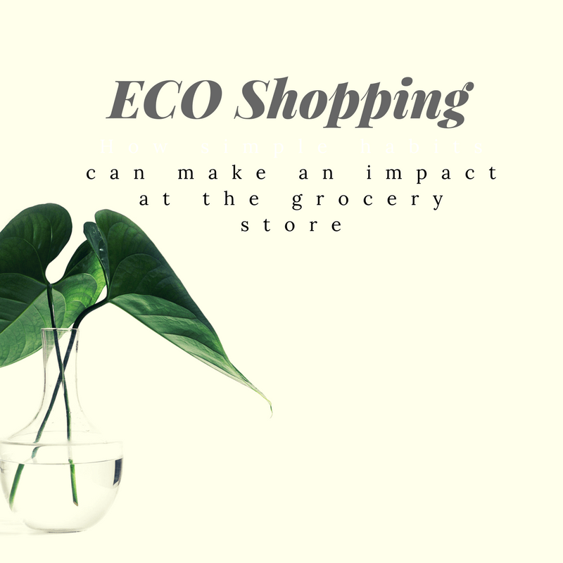 eco_shopping