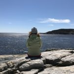 Whale Watching in Tadoussac For the First Time