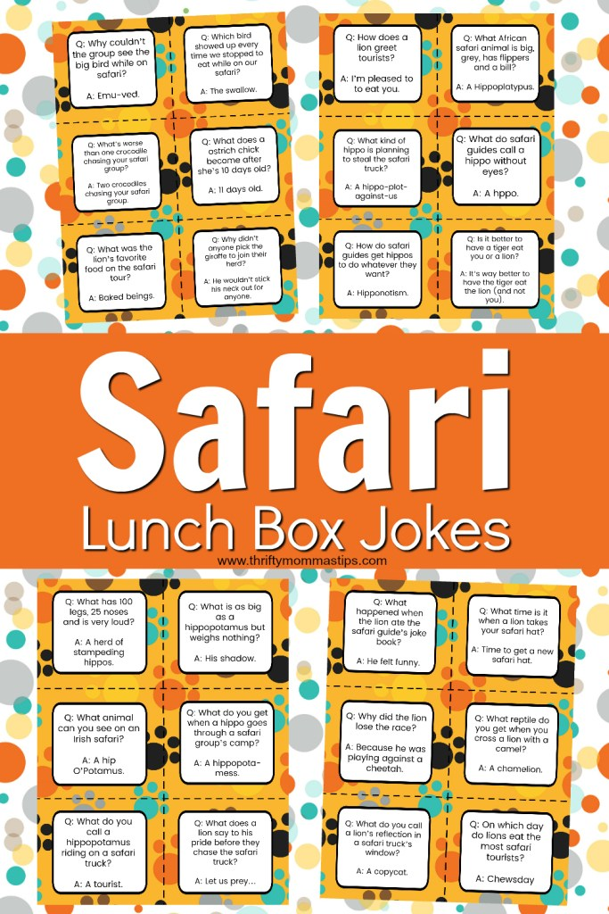 safari lunch box jokes