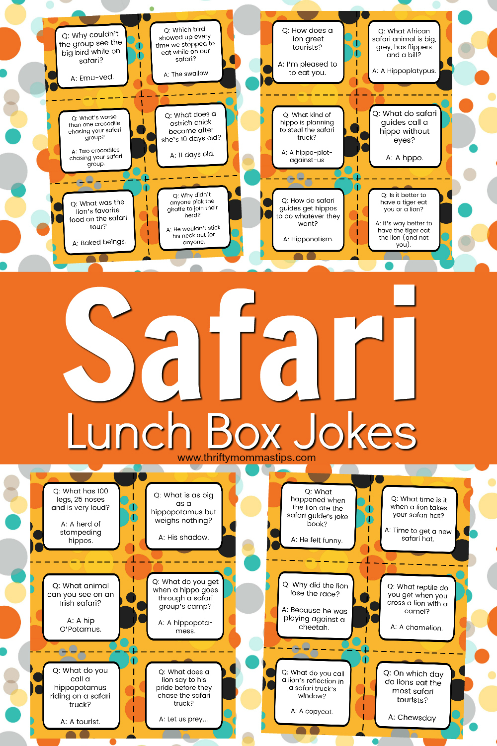safari_jokes