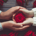 woman_man_hands_holding_roses