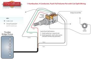 ThroBak Humbucker Coil Split Diagram  ThroBak