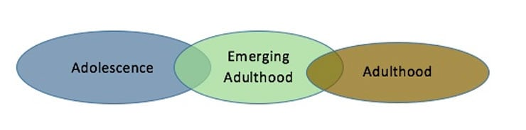 emerging adulthood 2 essay Essay emerging adulthood the most part these years in a persons life have often been referred to as emerging adulthood emerging adults have reached a step up from childhood but are not yet ready to fully take on adult responsibilities.