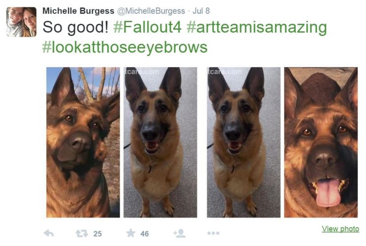 Fallout 4's Dogmeat is River in real life