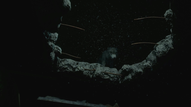 How to save the wolf in Until Dawn - catch you on the flip-side