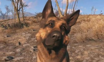 Help, I lost Dogmeat!