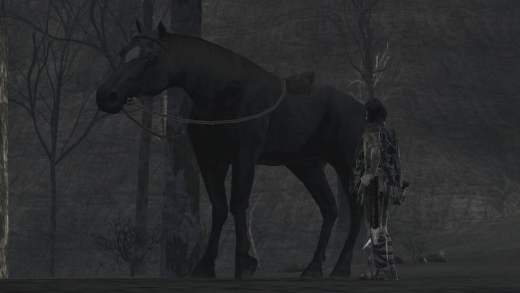 Travelling slowly Shadow of the Colossus