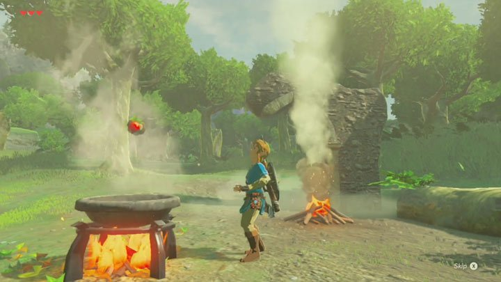 Breath of the Wild - Cooking