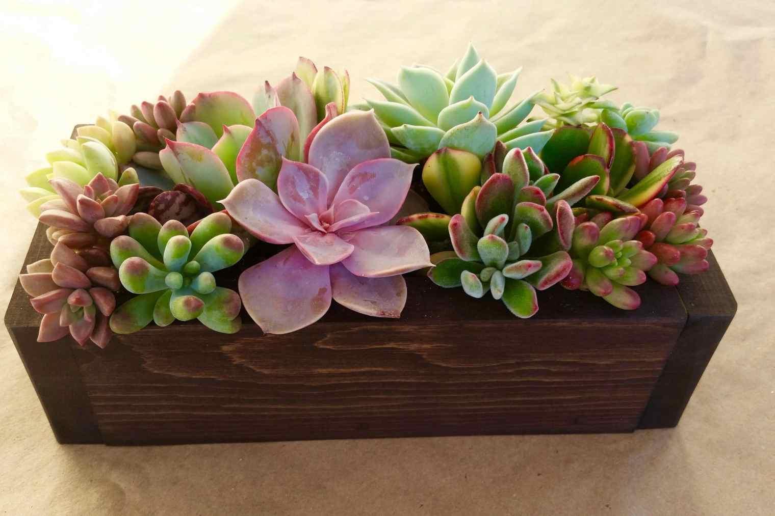 Floral arrangements by Mark K. Mitchell