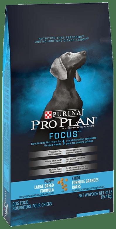 Pro Plan FOCUS