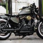 Customized Harley Davidson Sportster Motorcycles By Thunderbike