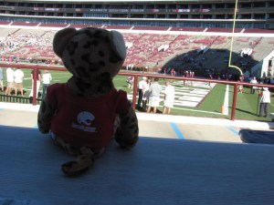 South Paw watches warmups at Davis-Wade Stadium in Starkville, MS in 2012.