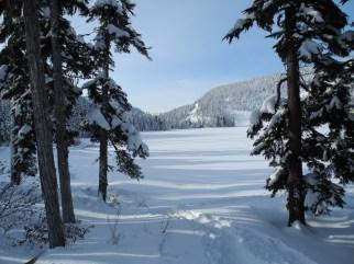 White Pass Dec 2012 017