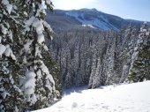 White Pass Dec 2012 029