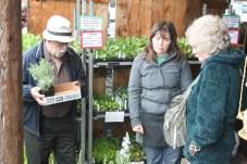 Olympia Farmers Market 2013 (12)
