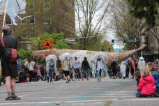 Olympia Procession Of The Species 2013 (374)