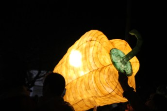 Olympia Washington Luminary Procession 2013 (62)