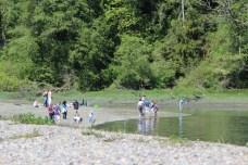 Tolmia State Park Washington (2)