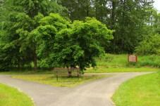 Pioneer Park Tumwater Washington (19)