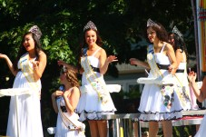 Capital Lakefair parade (3)
