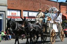 oregon trail days horse parade