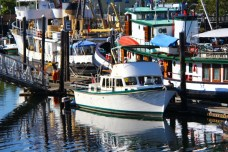 Olympia Harbor Days 2013 (2)