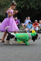olympia pet parade 2013 - 24