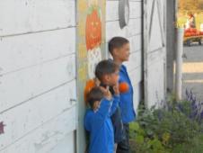Pumpkin Patch 2013 015