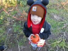 Pumpkin Patch 2013 023
