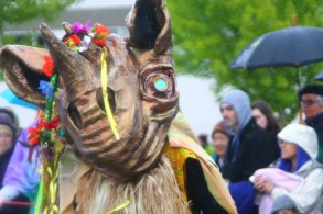 2015 olympia procession of the species (272)