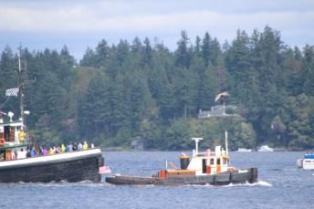 Harbor Days Olympia Washington 2015 (204)