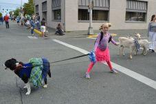 pet parade 27
