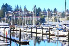 Boats decked at Percival Landing