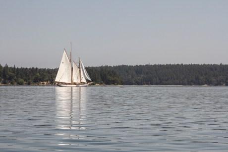 Hope Island Washignton Olympia Shelton (6)