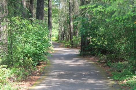 Ralph Munro Trail Dedication scenic