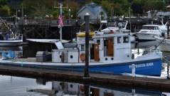 Olympia Harbor Days 7