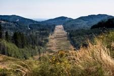 Rock Candy Mountain Capitol Forest Dirt Biking 5