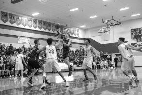 Timberline Capital Basketball 3871