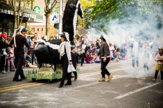 4.27.19 Procession of the Species-20
