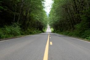 Olympia Motorcycle Ride to Wynoochee Dam Washington (9)