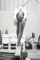 Gymnastics Capital Olympia North Thurston 7451
