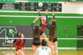 Black Hills Tumwater Volleyball 6134