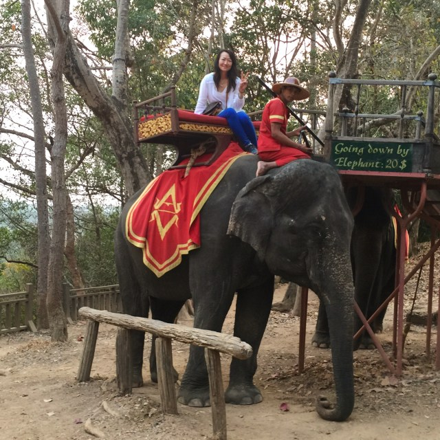 I rode Sambo, the elephant, while coming down the Bakheng mountain after watching the sunset