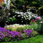Five Simple Steps to Designing Beautiful Flower Beds