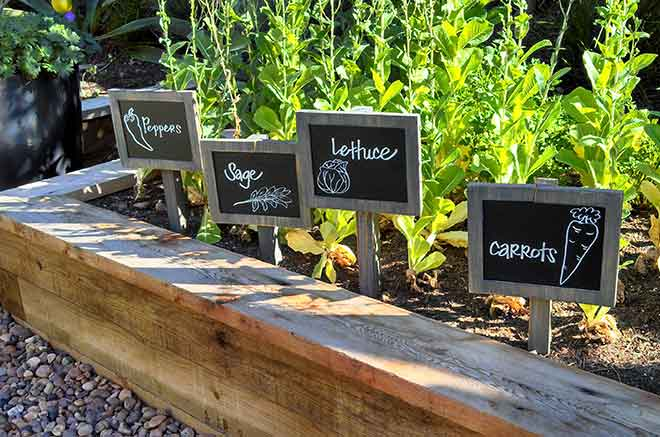 veggie plant labels